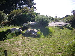 Arzon - dolmen du Graniol (1).JPG