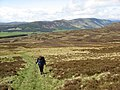 Ascent of White Hill - geograph.org.uk - 441519.jpg