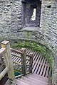 At Conwy, Wales 2019 046.jpg