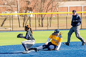 St. Edward's University - The Hilltoppers softball team in action against the Texas A&M–Commerce Lions in 2015