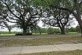 Audubon Park New Orleans 7 April 2020 - 03.jpg