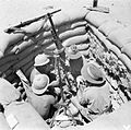 Australian and South African Forces in North Africa during the Second World War E14671.jpg