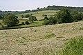 Awliscombe, near Pomhayes Farm - geograph.org.uk - 187207.jpg