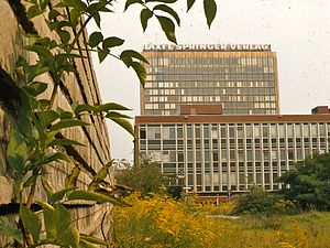 Axel Springer SE - The Springer building in Berlin was built adjacent to the Berlin Wall