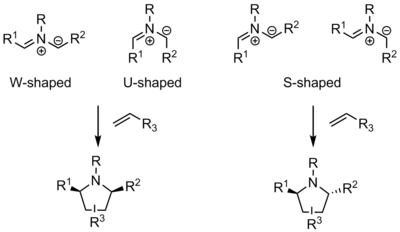 Azomethine ylide shapes