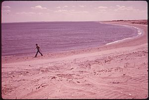 Great Kills Park - Beach at Great Kills Park, 1973.  Photo by Arthur Tress.