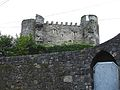 Back of Carlow Castle.jpg