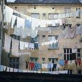 Backyard with clothes lines.jpg
