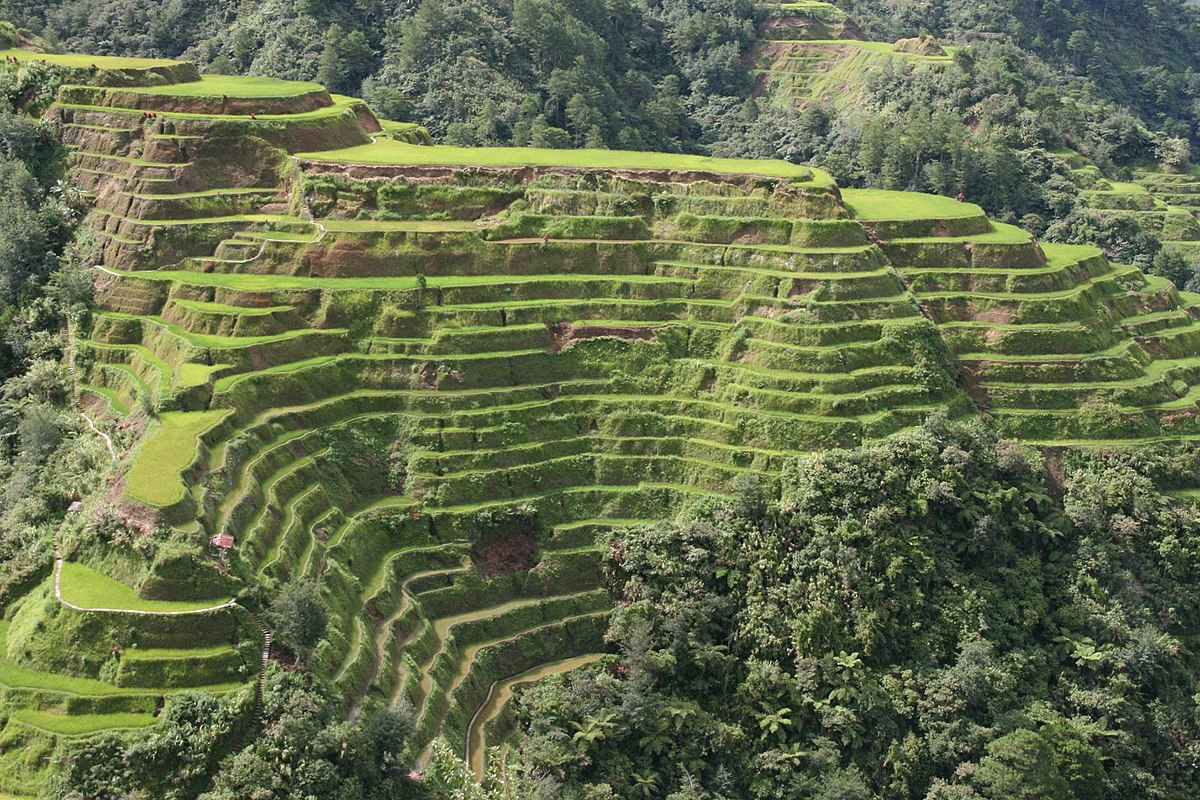 Banaue rice terraces wikipedia for What are terraces