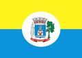 Bandeira Santarem.png