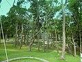 Barbados, Karibik - Farley Hill House - Park - panoramio.jpg