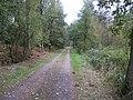 Barnbruch 11.10.2009 - panoramio - Christian-1983 (10).jpg