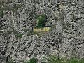 Barrandov Rocks1.JPG