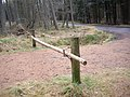 Barrier to woodland entry - geograph.org.uk - 1182003.jpg