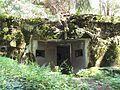 Bartošovice v Orlických horách, R-S 67 (rok 2010; 02).jpg