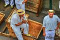 Basket sleds - Carro-de-Cesto, Madeira (16398497059).jpg