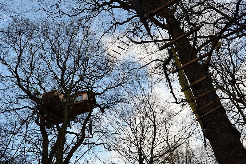 File:Baumhaus,Hambacher Forst,NRW.jpg
