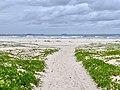 Beach access in Kingscliff, New South Wales 01.jpg