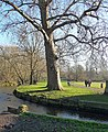 Beddington Park (1) (geograph 4294247).jpg