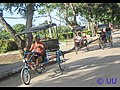 Beispiel Bici Taxi.jpg