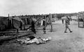 Belsen Concentration Camp victims lying on the ground Wellcome L0029071EB.jpg