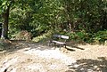 Bench by the path above Happy Valley - geograph.org.uk - 1516541.jpg