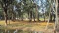 Beside Lake - panoramio (1).jpg