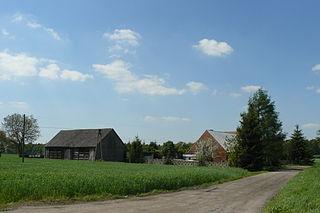 Białężyn, Poznań County Village in Greater Poland, Poland