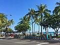 Biki in Waikiki (28159018639).jpg