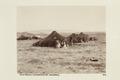 """Bild från familjen von Hallwyls resa genom Algeriet och Tunisien, 1889-1890. """"Gamla Biskra - Hallwylska museet - 91941.tif"""