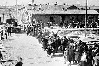 Birkenau a group of Jews walking towards the gas chambers and crematoria.jpg