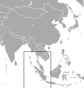 Black-eared Flying Fox area.png