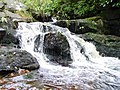 Black Burn Falls. Cragside - geograph.org.uk - 5758.jpg