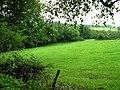 Black Dog Woods - geograph.org.uk - 532591.jpg