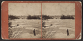 Blackbird Island and Rapids below Goat Island Bridge, by John B. Heywood.png