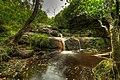 Blackburn Falls (3839456809).jpg