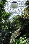 Bloedel Floral Conservatory, Queen Elizabeth Park - Vancouver, Canada - DSC07474.JPG