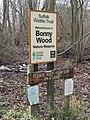 Bonny Wood - geograph.org.uk - 1160000.jpg