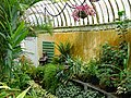 Botanic Gardens - Belfast - Northern Ireland - UK - 04 (28731259177).jpg