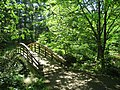Botanical Gardens at Asheville - bridge 1.JPG