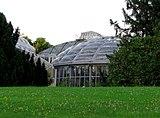 Botanischer-garten-berlin-greenhouse-0a.jpg