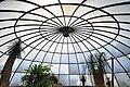 Botanischer Garten der Universität Zürich - Kuppel - Innenansicht 2011-08-21 14-03-52.JPG