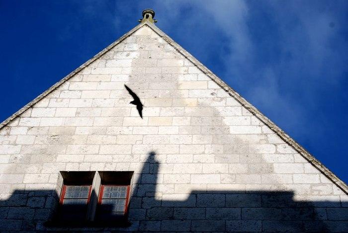 Maison Dite De Pelvoysin Monument Historique 224 Bourges