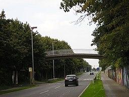 Baumberger Chaussee in Monheim am Rhein