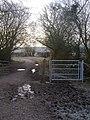 Bridleway Between Two Ponds - geograph.org.uk - 1107385.jpg