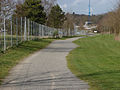 Brooklands footpath, 15 April 2013.jpg
