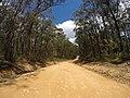 Brooman NSW 2538, Australia - panoramio (121).jpg