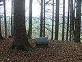 Burgstall im Bannwald - panoramio (1).jpg