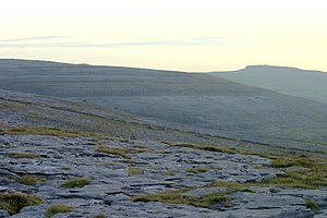 The Burren - The karst hills of The Burren