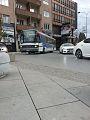 Buses in Pristina.jpg
